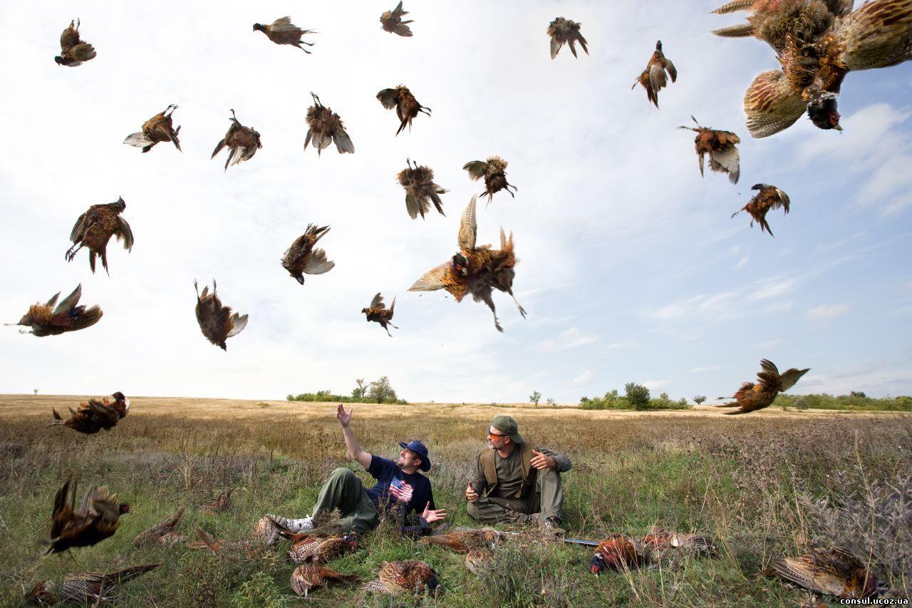Разрешение охоты в заповедниках превратит Украину в тир.